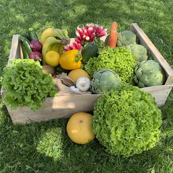 Panier de fruits et de legumes